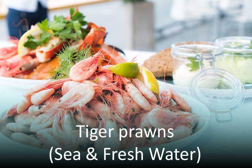 Tiger prawns (Sea & Fresh)
